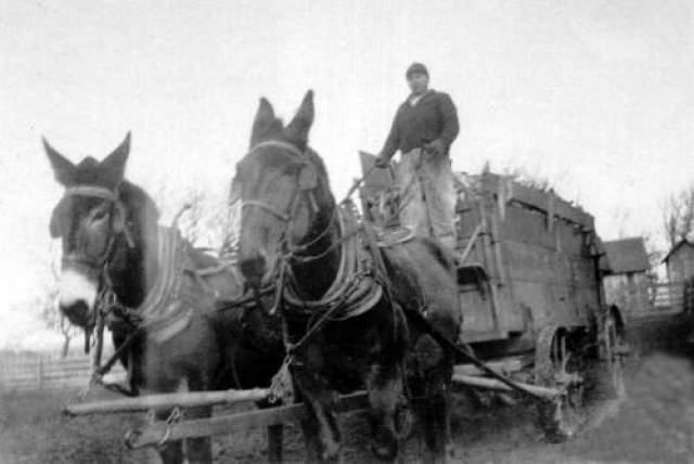 Невероятное исчезновение Дэвида Лэнга Известный случай произошел на ферме в Теннесси в сентябре 1880 года, на глазах у нескольких свидетелей. Двое детей Лэнга, Джордж и Сара, играли во дворе. Их родители Дэвид и Эмма вышли к главному входу, после чего Дэвид направился на пастбище лошадей.