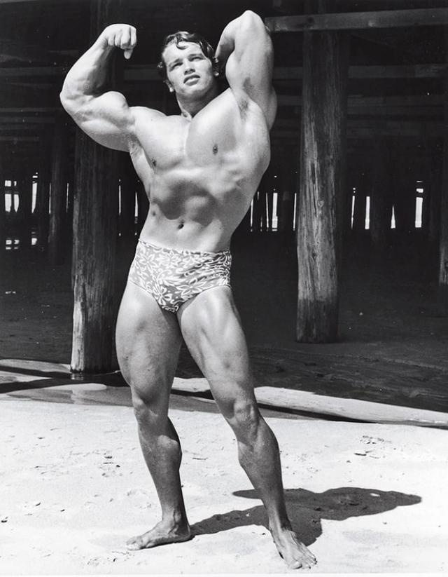 Арнольд Шварценеггер. Выдающиеся физические способности Железного Арни не могли не попасть во внимание порнопродюсеров. По непроверенным данным, именно в этом амплуа он дебютировал на широких экранах, когда подобные фильмы еще показывали в специальных кинотеатрах.