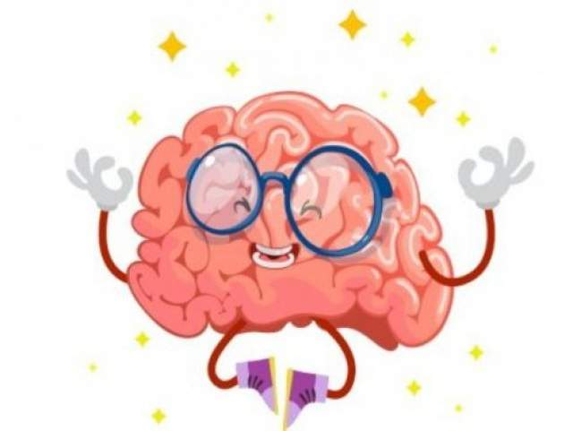 Мозг на 60% состоит из жира.