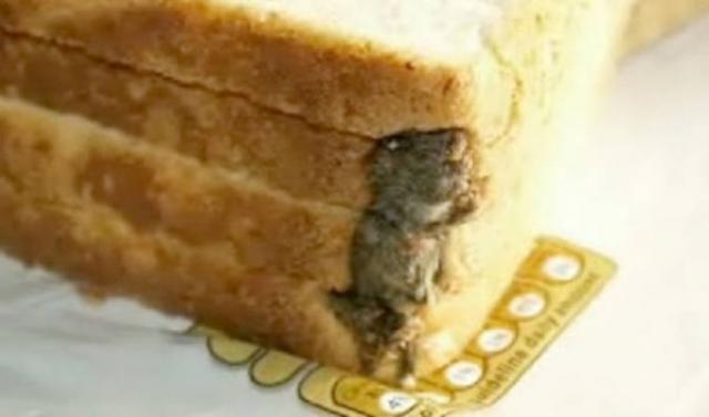 Классический случай - мышь в хлебе. Стивен Форз из Кидлингтона (Великобритания) в январе 2009 купил хлеб в магазине. Он был потрясен, увидев в буханке запеченную мышь. Фирма-производитель была оштрафована.
