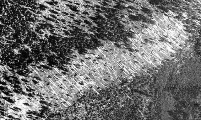Взрыв на Тунгуске был слышен за 800 км от эпицентра, взрывной волной был повален лес на площади 2000 км², в радиусе 200 км были выбиты стекла некоторых домов; сейсмическая волна зарегистрирована сейсмическими станциями в Иркутске, Ташкенте, Тбилиси и Йене.