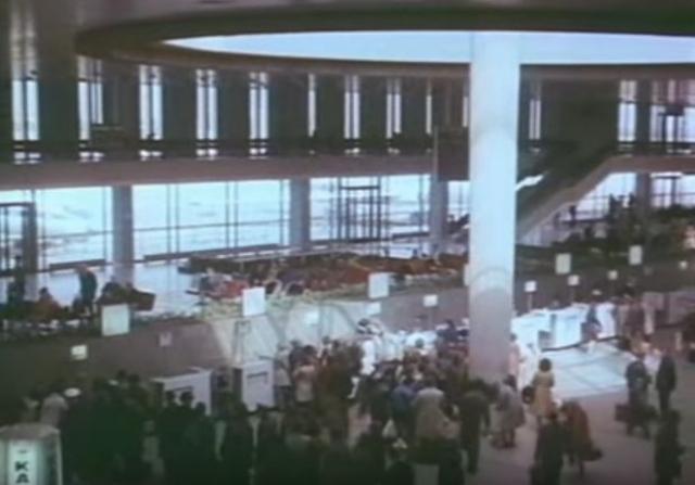 Овечкины приехали в аэропорт с ручной кладью и музыкальными инструментами.