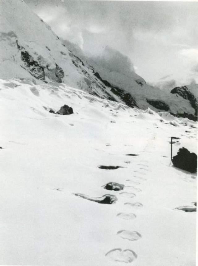 """В начале 50-х годов лондонская газета """"Daily Mail"""" решила внести свой вклад в дело поисков тщательно скрывающегося от людей большеносого существа. Для этого журналисту Ралфу Иззарду поручили организовать экспедицию в Гималайские горы."""