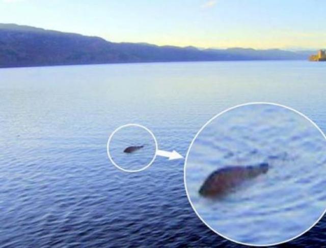 """Будет ли когда-нибудь поставлена точка в истории о Лох-несском чудовище, никто не знает. В Шотландии команда """"охотников за монстрами"""" приступила к очередной операции по поиску известного Несси. Поиски ведутся с помощью подводного микрофона, специально сконструированного для обнаружения советских подводных лодок."""