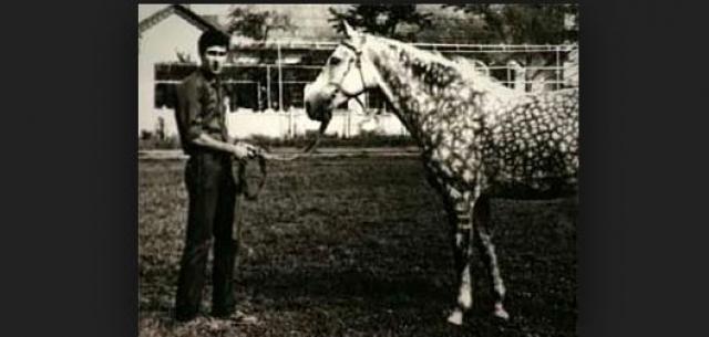 Свое первое нападение Головкин совершил в 1984 г.: один раз ему помешали неожиданно вышедшие из леса взрослые люди, но во второй раз будущему убийце удалось схватить мальчика, вышедшего за ограду пионерского лагеря чтобы покурить.