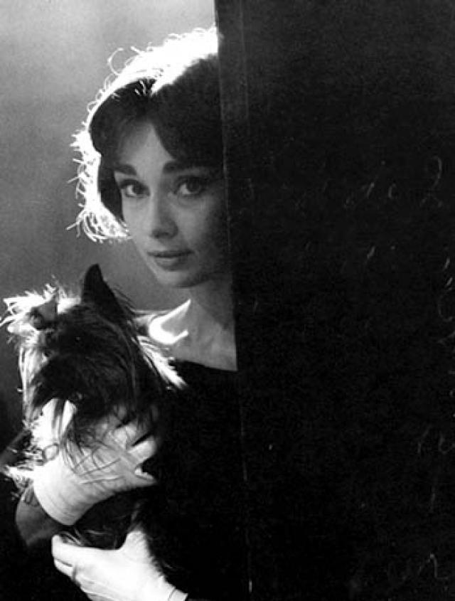 Мать Одри работала на унизительных для аристократки условиях, чтобы прокормить семью. Хепберн должна была зарабатывать сама, и карьера актрисы казалась самым естественным решением.