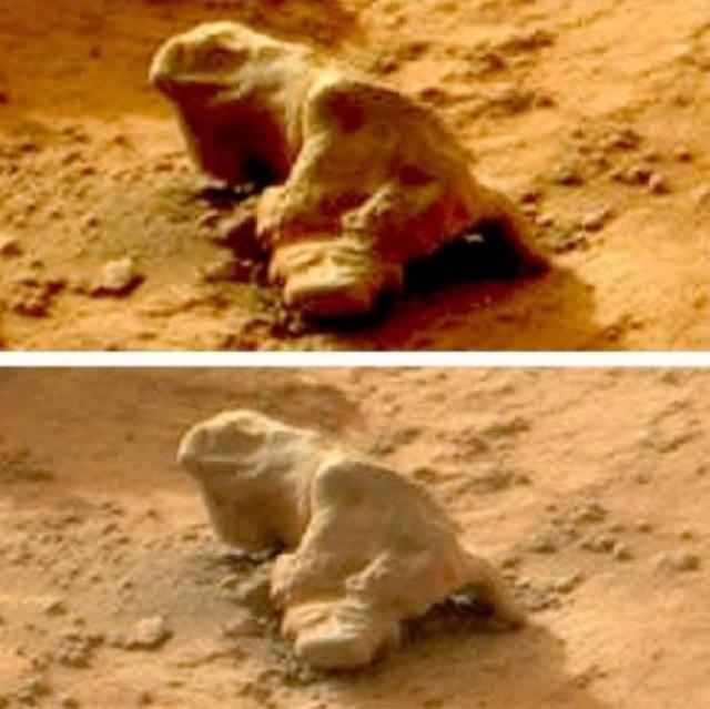 """В январе 2013 Curiosity снял на Марсе """"окаменевшую игуану""""."""