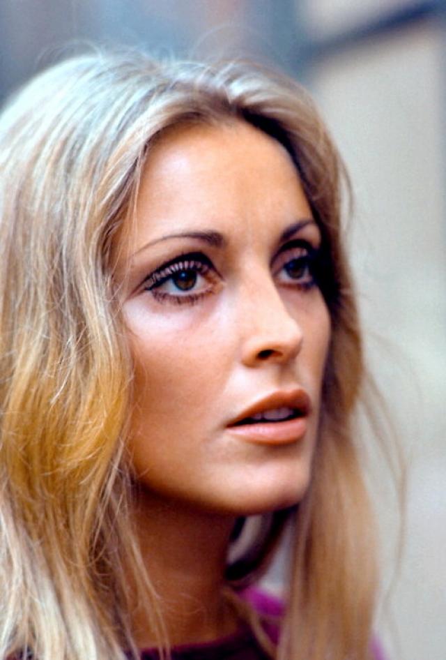 Шэрон Тейт. В августе 1969 года Голливуд буквально был охвачен ужасом. В прессе появились снимки чудовищного по жестокости убийства известной актрисы и модели Шэрон Тейт, жены режиссера Романа Полански.