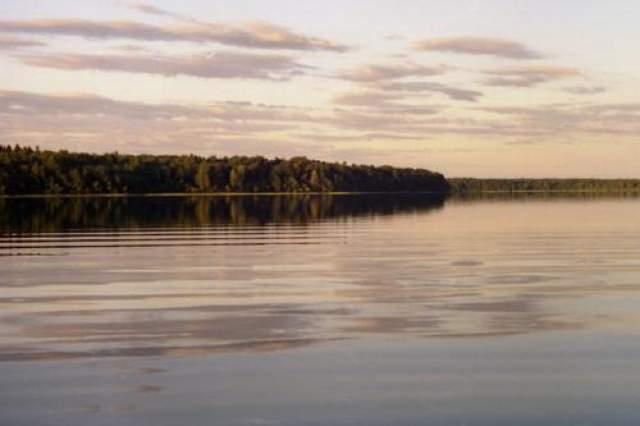 """По многочисленным (но, к сожалению, не подтвержденным документально) рассказам, в озере не раз видели животное длиной около пяти метров, напоминающее кого-то вроде дракона, хотя практически все наблюдатели описывают его по-разному. Одна из местных легенд гласит, что давным-давно """"Дракона из Бросно"""" были сьедены татро-монгольские войны, устроившие на берегу озера привал."""