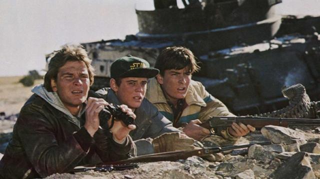 В основе сюжета – судьба двух братьев-подростков, которым во время вторжения удалось с горсткой друзей бежать в горы. Эта группа оказывает жестокое сопротивление интервентам в попытке защитить родных и близких.