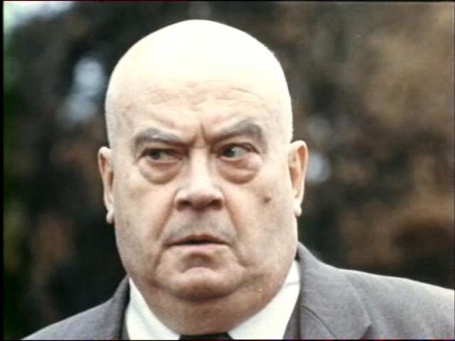 Евгений Моргунов в 1970-1980-е годы редко снимался в кино, в основном в эпизодах. В постсоветские годы он снялся в большем числе картин, чем за предыдущие двадцать лет, однако главных ролей по-прежнему не играл. Скончался в московской Центральной клинической больнице 25 июня 1999 года от второго инсульта.