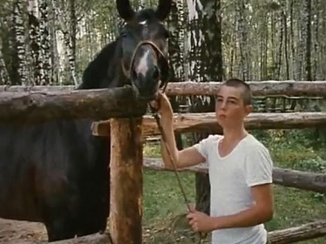 """Первыми киноопытами Бодрова-младшего стали крошечные эпизодические роли, еще в школьном возрасте, в таких фильмах отца, как """"Я тебя ненавижу"""" и """"СЭР (Свобода - это рай)"""" ."""