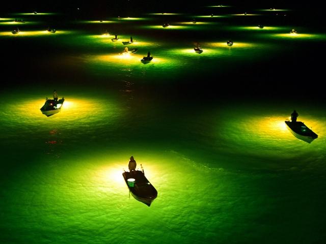 Ночная рыбалка в Японии. The Asahi Shimbun/Getty Images