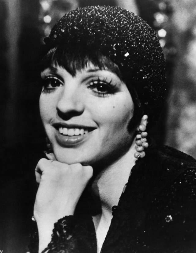 С ранних лет Лайза стала появляться то на театральной сцене, то на телевидении, а в 17 лет она уже пела вместе с матерью. Не удивительно, что вскоре ее популярность превзошла популярность родителей.