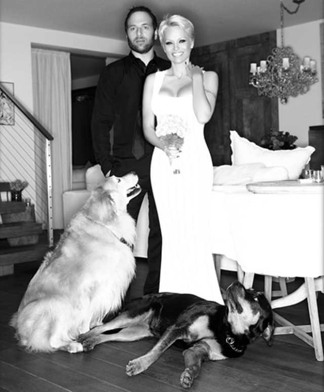 Андерсон решила повторить попытку в 2014 году и вновь стала женой Саломона. Но и на этот раз пара прожила вместе не больше года.