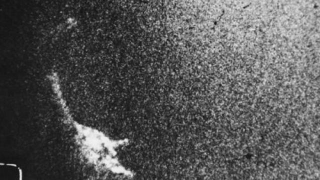 Райнс не останавливался на достигнутом и в последующие годы продолжал свою работу. Этот кадр был сделан под водой на глубине 12 метров и обработан другом Райнса фотографом Чарльзом Викоффом.