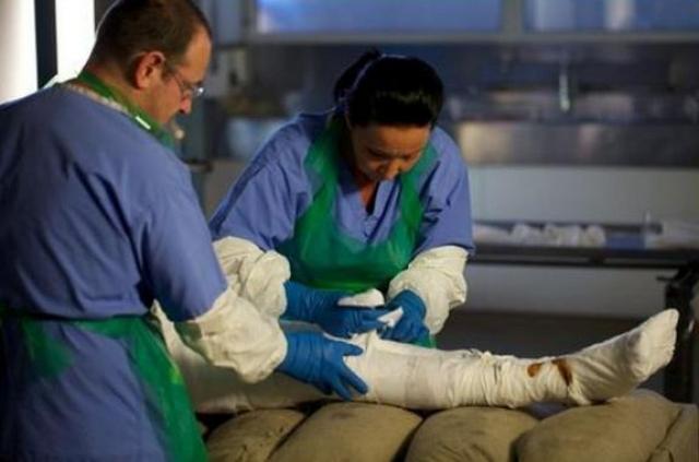 Доктор Стефан Бакли мумифицировал труп Биллиса с помощью той же самой методики, которую применяли для бальзамирования Тутанхамона. Таким образом Аллан стал первым телом более чем за 1000 лет, которое обработали таким способом.