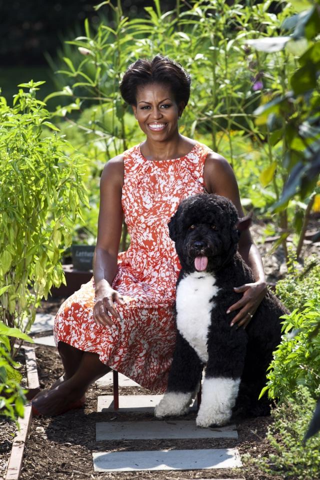 """Первая леди США увлекается садоводством и усиленно пропагандирует натуральные продукты, создавая моду на огороды - то, чего в Штатах нет в принципе. Мишель Обама написала книгу """"Выращено в Америке"""" - сагу о том, как развивалось садоводство в стране и Белом доме в частности."""