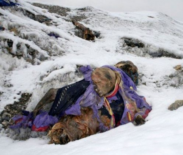 С 1990-го ледник сполз почти на километр и подтаял. Первые сообщения о показавшихся на поверхности человеческих останках и вещах появились в середине двухтысячных.