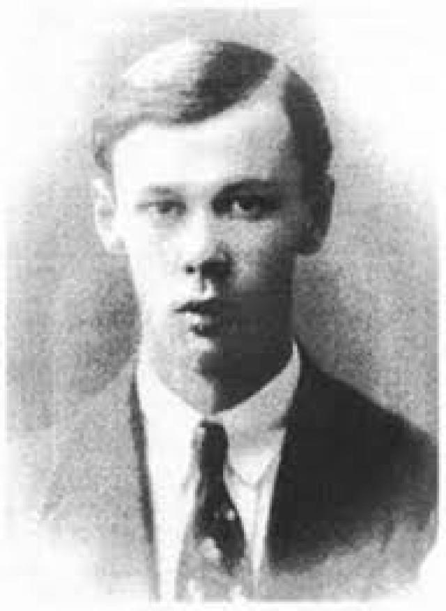 Остап был вторым ребенком в семье. Старший брат Натан , больше известный как поэт Анатолий Фиолетов , сыграл в жизни Остапа важную роль…