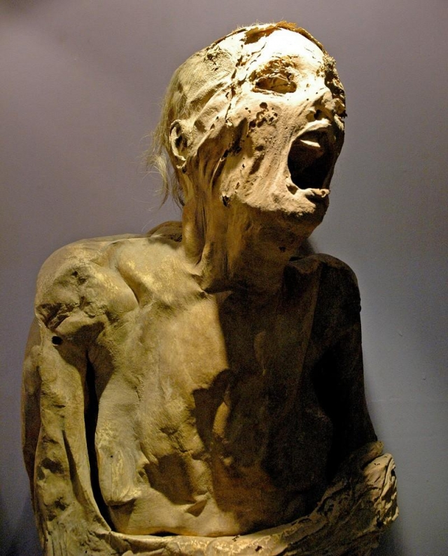Кричащие мумии из музея Гуанахуато. Мексиканский музей мумий, пожалуй, одно из самых леденящих кровь мест на земле: здесь представлены 111 мумий, которые представляют собой естественным образом сохранившиеся мумифицированные тела людей, в большинстве своем умерших во второй половине XIX века и первой половине XX века