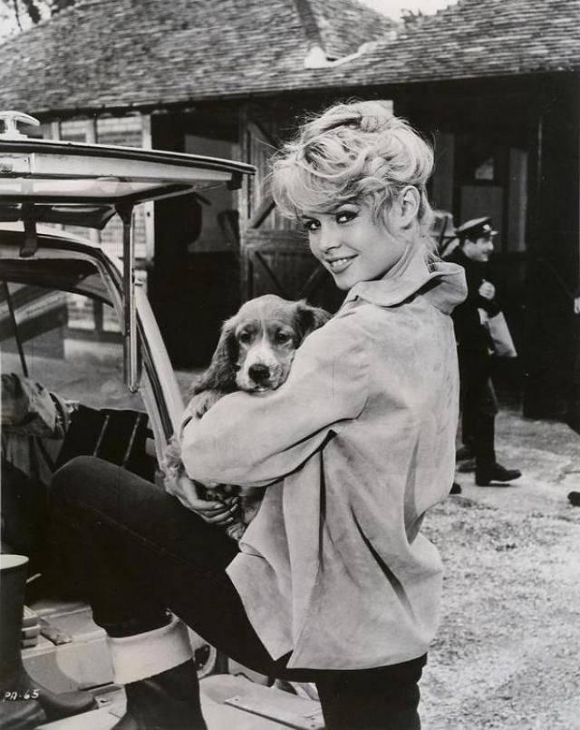 Брижитт Бардо. Деятельность в этом направлении французская актриса начала еще в 60-х, выступив с бескомпромиссным требованием запрета на жестокие убийства на скотобойнях