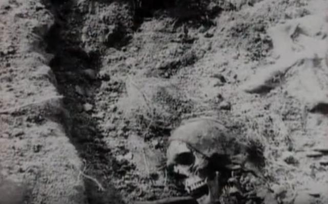 Погибло 24 человека, еще два человека убиты вечером 2 июня при невыясненных обстоятельствах. Все тела погибших поздно ночью вывезли из города и похоронили в чужих могилах, на разных кладбищах Ростовской области.