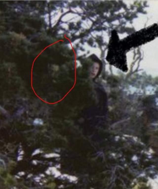 При более детальном увеличении, на таинственной фотографии рядом с неизвестным можно обнаружить и еще одно непонятное существо.