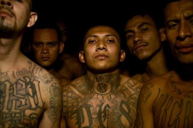 """Несмотря на то, что Мексиканская мафия была отчасти создана, чтобы проявить уважение к цивилизациям Майя и Ацтеков, ее главной целью была защита своих членов от других заключенных, равно как и от охранников. Тюрьму Дьюэл считали """"университетами"""" заключенных, где они могли развивать свои навыки драки, наркобизнеса и создания оружия."""