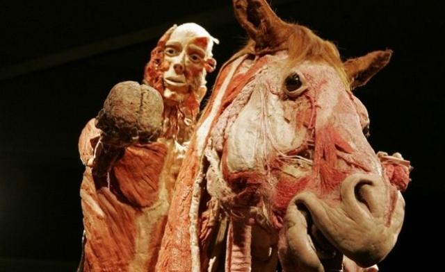 Мумифицированные тела фон Гагенса фехтуют, танцуют, общаются и играют на музыкальных инструментах.