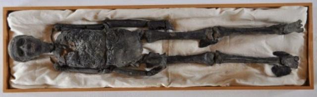 """Среди жертв """"проклятия"""" в прессе называли: вдову лорда Корнарвона (умерла от укуса насекомого). рентгенолога Вида, который просвечивал мумию фараона прямо в гробнице, близкого друг Карнарвона Джорджа Гоулда (после посещения гробницы его свалила лихорадка), а также Н. Девиса, Дж. Фукарта, Г. Уинлока, А. Гардинера, А. Лукаса, Дж. Брэстеда."""