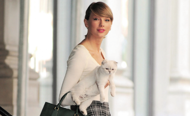 """Мередит Грей - питомец Тейлор Свифт. """"Парни приходят и уходят, а кошка остается рядом"""", - говорит певица."""