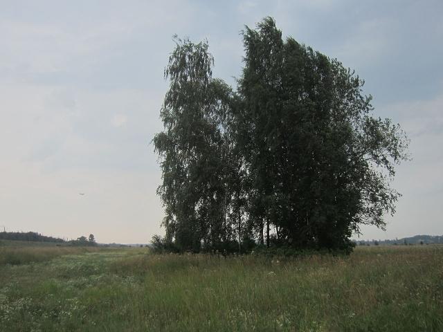Обломки разбросало на площади радиусом 30 метров, а все находящиеся на борту погибли. Впоследствии вблизи места катастрофы родственниками погибших были посажены несколько деревьев, среди которых разбито небольшое кладбище.