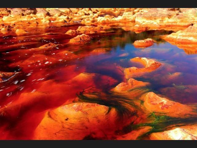 Из-за них же река приобрела кислотный цвет - так как в воде много тяжелых металлов.