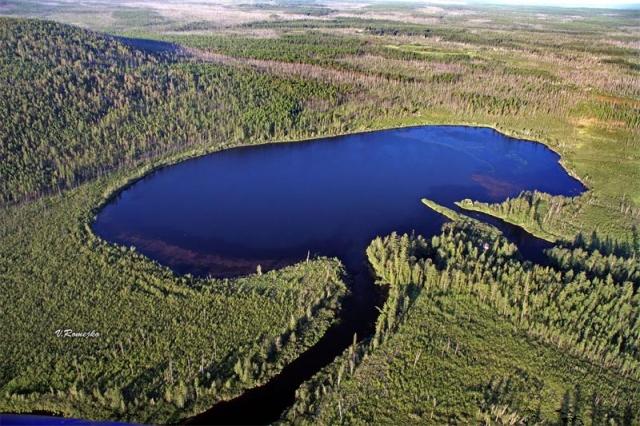 Все данные указали на то, что возраст озера Чеко не должен превышать 100 лет, что согласуется с гипотезой о том, что оно образовалось в 1908 г в результате падения небесного тела.