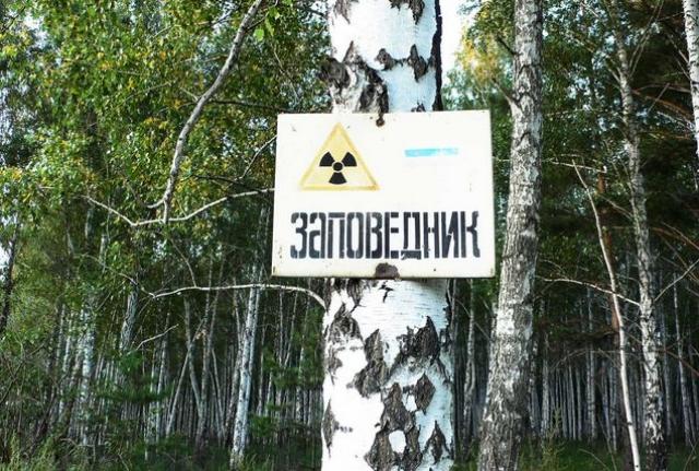 С 1968 года на этой территории образован Восточно-Уральский государственный заповедник.