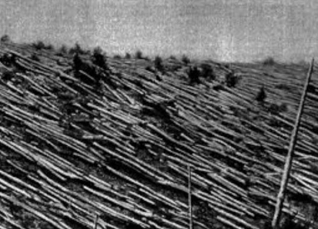 В результате взрыва были повалены деревья на территории более 2000 км², оконные стекла в домах были выбиты в нескольких сотнях километров от эпицентра взрыва.