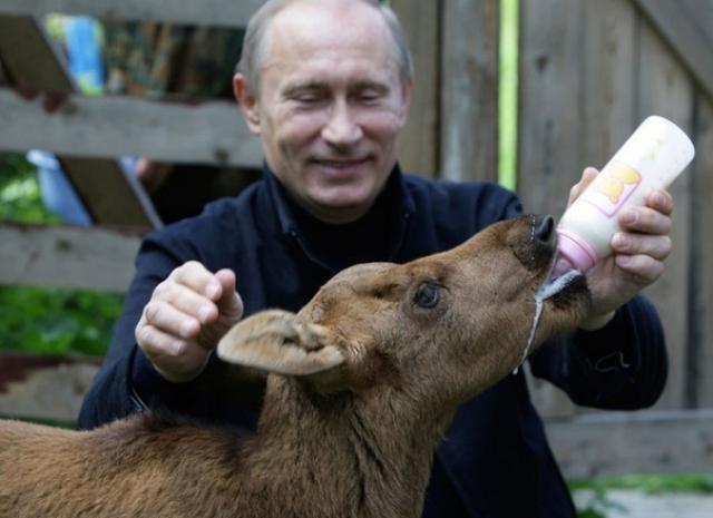 """Владимир Путин : """"Если чиновника схватили за одно место, а он все равно не чешется, - надо схватить его за два места. За все места! И тогда он начнет чесаться""""."""