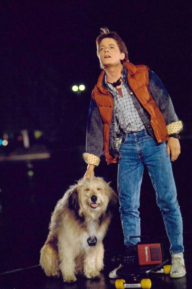 """Майкл Джей Фокс. Получивший широкую известность благодаря трилогии """"Назад в Будущее"""" актер получил инвалидность из-за съемок в этой картине."""