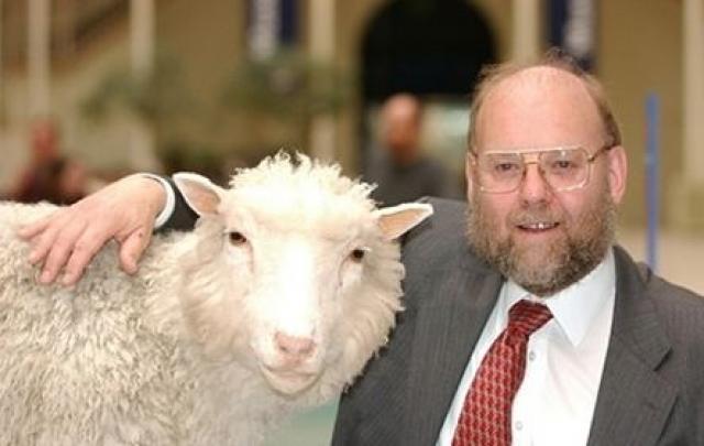 До нее было сделано 226 попыток клонирования. Все неудачные. Лишь на 227-м эксперименте удалось получить полноценную овечку. Это случилось 5 июля 1996 года.