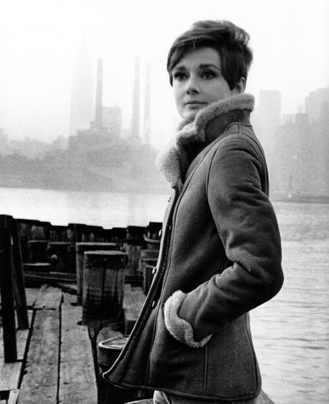 С 1967 года после пятнадцати весьма успешных лет в кинематографе, Хепберн снималась от случая к случаю. А после того, как развелась со своим первым мужем Мелом Феррером, впала в тяжелую депрессию.