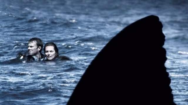 """""""Открытое море"""" Этот фильм 2003-го года основан на ужасной истории. Что будет, если нырнуть с аквалангом посреди моря, а лодка, с которой вы ныряли, уйдет без вас? Но именно это случилось с семейной парой из Батон-Руж6 штат Луизиана."""