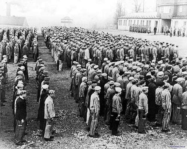 В четыре утра и восемь вечера эсэсовцы пересчитывали узников на аппельплатц. Процедура длилась часами. Именно здесь проходили также публичные наказания, избиение и исполнение смертного приговора.