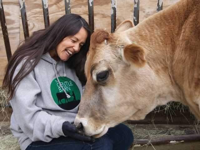 Имя человека, купившего волосы Бибера, осталось нераскрытым, но точно известно, что средства от продажи передали в благотворительную организацию The Gentle Barn, занимающуюся спасением брошенных животных.