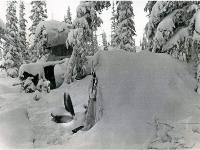 Хартвелла спасли через 31 день. Поскольку он был серьезно ранен и не мог добывать еду, а запасы быстро кончились, ему пришлось употреблять в пищу плоть одного из погибших, которая хорошо сохранилась в холодных погодных условиях.