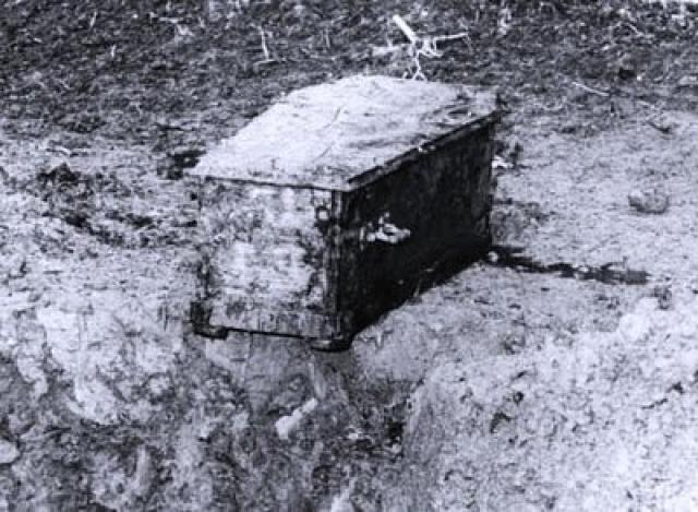 В 1978 году гроб с телом Чаплина был выкопан и похищен с целью получения выкупа. Полиция арестовала преступников, и Чаплин был перезахоронен 17 мая 1978 года.