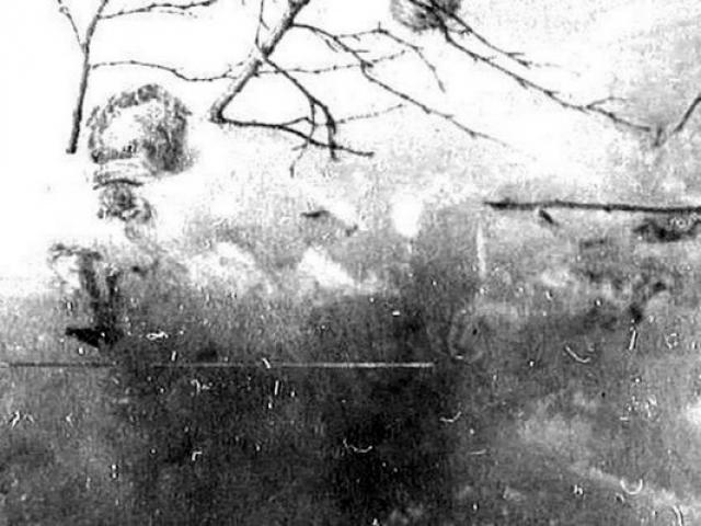 Тогда же в 300 метрах от кедра вверх по склону в сторону палатки было найдено тело Игоря Дятлова, который полулежал на спине, головой в сторону палатки, приобняв рукой ствол березки.