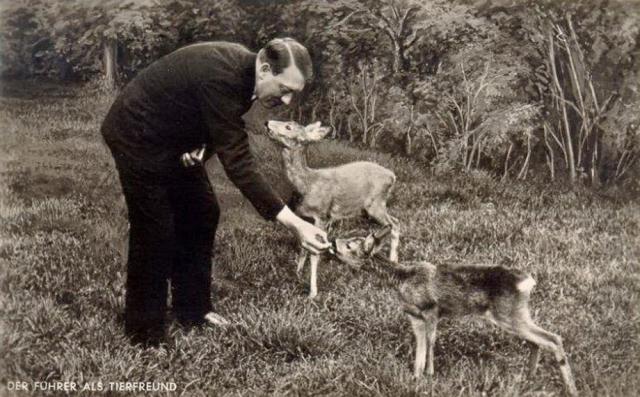 После прихода к власти в январе 1933 года, нацистская партия приняла широкий набор законов о защите животных. Гитлер считал, что в новом Рейхе не будет никогда жестокого обращения с животными.