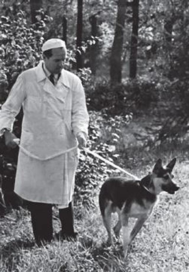 В 1946 году Владимиром Демиховым впервые в мире было успешно пересажено собаке второе сердце, а вскоре он смог полностью заменить сердечно-легочный комплекс.