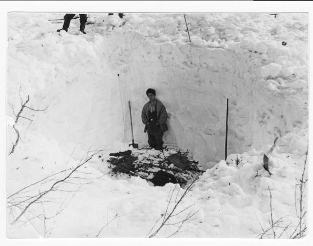Лишь когда снег начал таять на глубине более 2,5 м был найден настил из 14 стволов небольших пихт и одной березы длиной до 2 м, на котором лежал лапник и несколько предметов одежды.